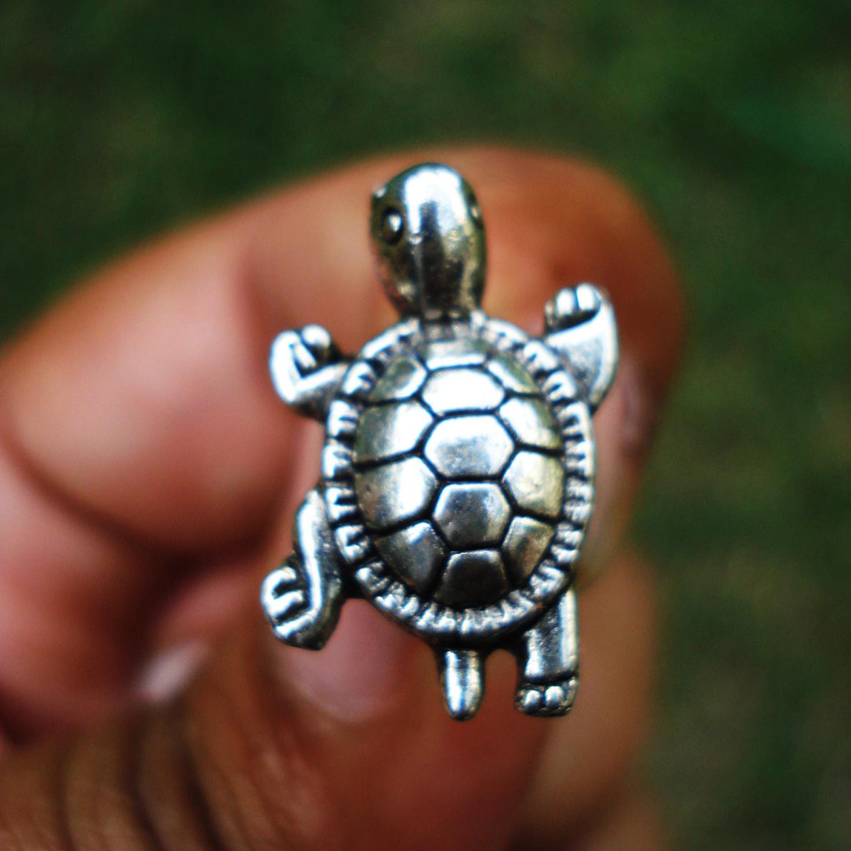 turtle-stud_sq